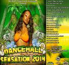 A i Productions Presents DanceHall Sensation 2014