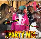 BLACK CITY HUSTLA DJS / WE GOT NOW MIXTAPES PRESENTS INDEPENDENT PARTY MIX 30