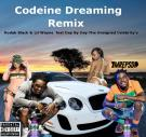 Codeine Dreaming Kodak Black Lil Wayne feat Day By Day The Unsigned Celebrity's