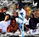 Dacland Clucc Nation Vol. 1